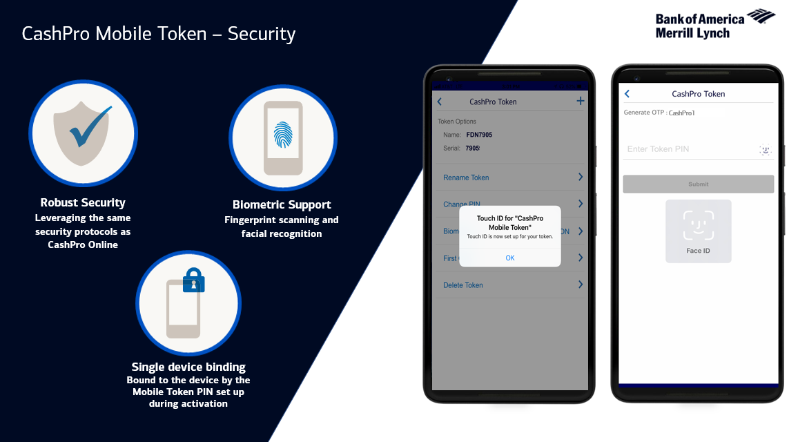 Cashpro Mobile Token Security